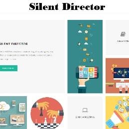 Silent Director