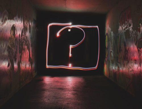 A Q&A with our Head Honcho – Jonathan Bird
