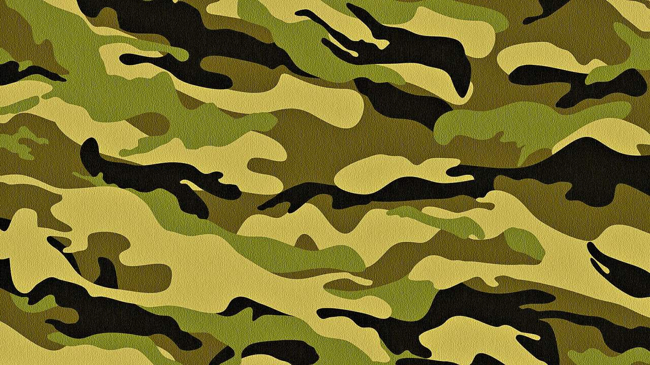 military cadet training corps- camo print header