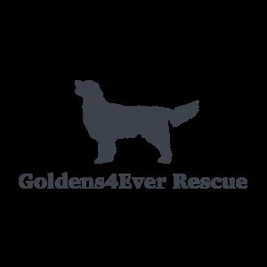 Goldens 4 Ever Rescue Logo