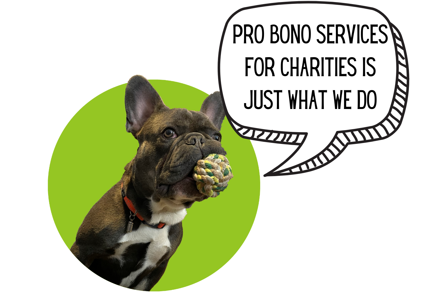 Delivered Social Charities